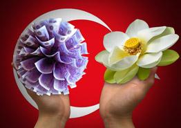 Туриста в Анталье оштрафовали на 10 тыс. долларов за сорванный цветок