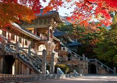 Десять вещей, которые можно увидеть в Южной Корее за 1 500 $