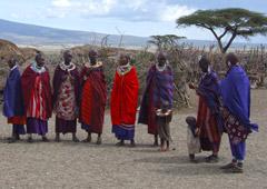 Как я вернулся из Африки живым и здоровым