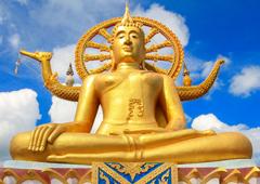 Как бесплатно отдохнуть в Таиланде